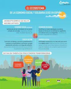 El Ecosistema de la ESS en España. Fundacion Carasso, Daniel & Nina - Infografía